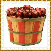 RDA apples