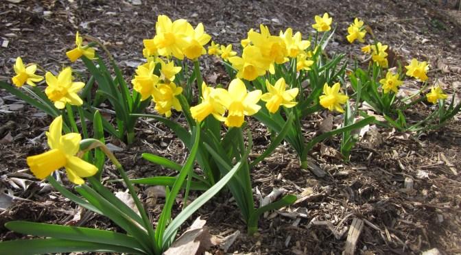 It is April!